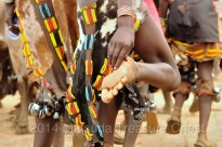 During the Bull jumping ceremony, the ladies of Hamar people will dance and sing while going through the whipping process. The skirts are made of animal skins and decorated with striking color seed beads