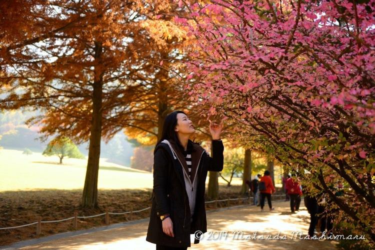 Autumn in my heart ;-)