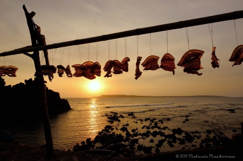 Dried fish hanged along the village